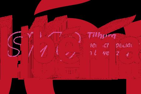 libema_logo